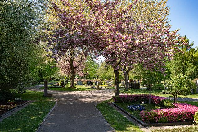 friedhöfe urnengräber erdgräber grabsteine