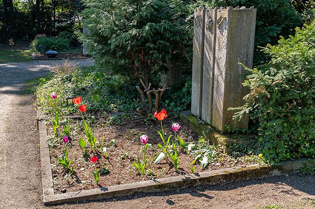 friedhöfe neuss tulpen gräber beerdigung