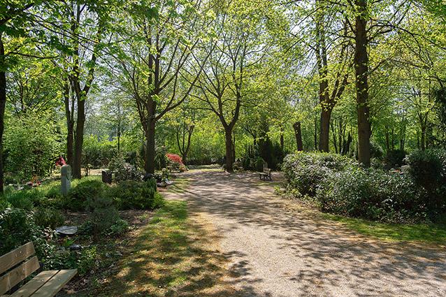 friedhöfe abschiedfriedhofsweg bestattung beisetzung gräber bänke