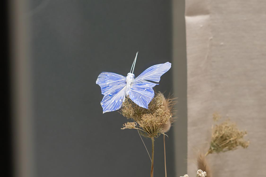 schaufenster bestatter neuss keramikurne 06